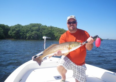 Redfish-guide-in-Tampa-Bay