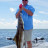 Cobia fishing in Tampa Bay