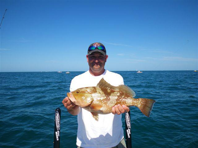 Tampa Red Grouper