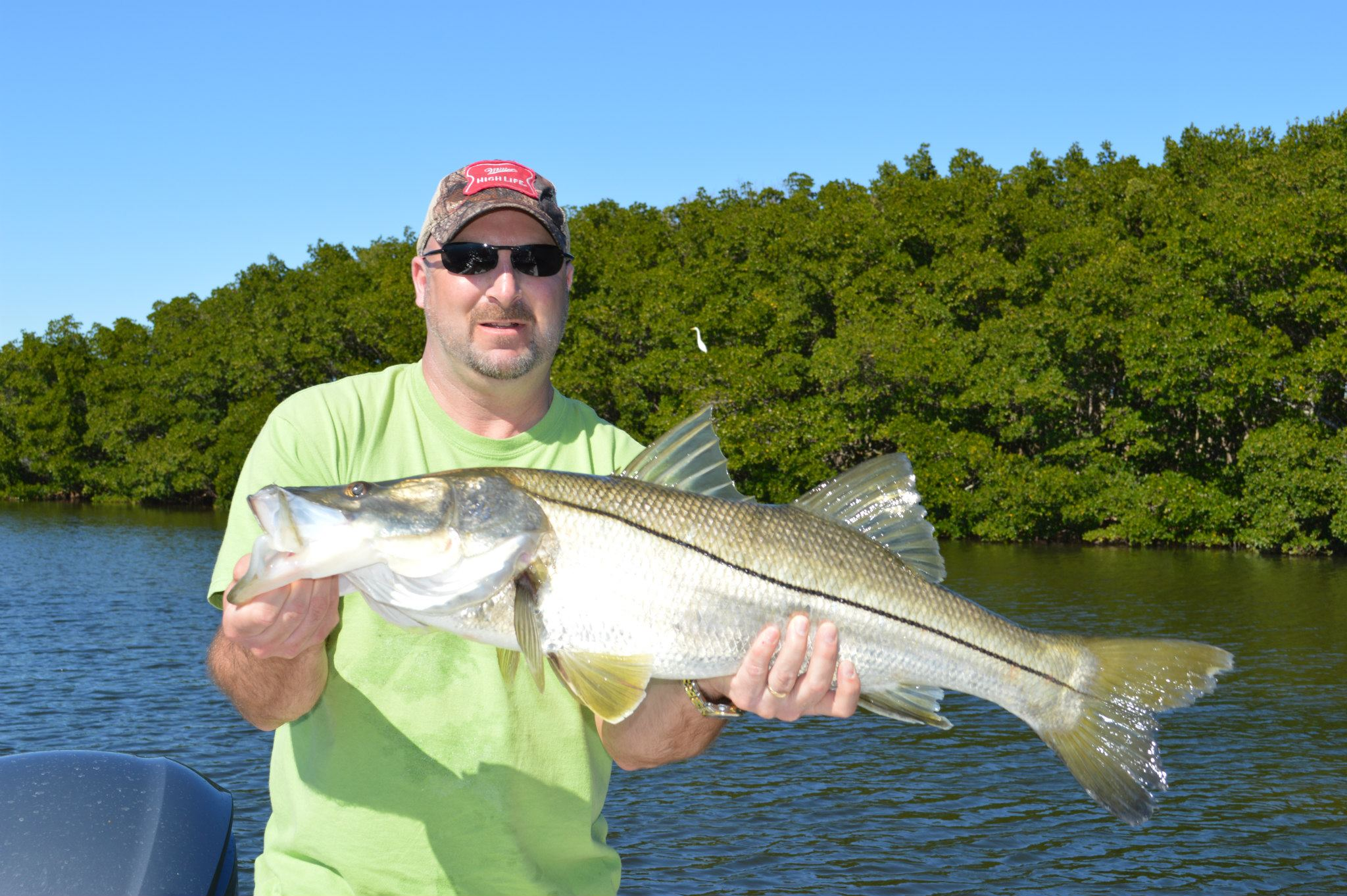 Captain mike gore tampa fishing charters for Fishing for snook