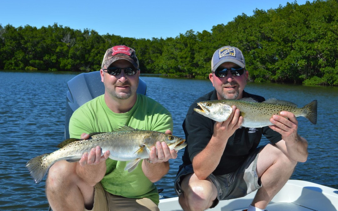 Double Tampa Trout