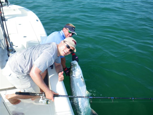 Tarpon are starting to show up