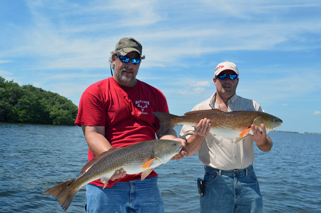 The Big Redfish have moved in!