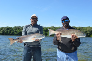 Fishing the flats in Tampa Bay for Redfish