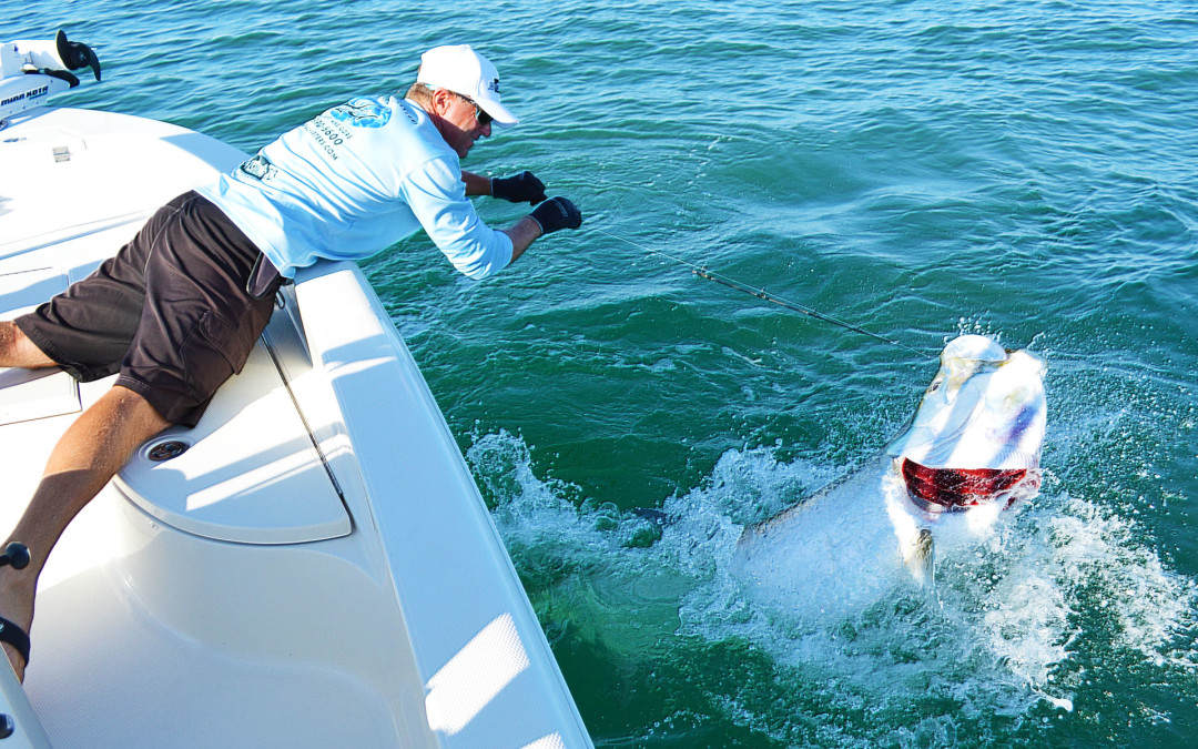 "Tarpon Season ""Don't miss your chance at the Silver King"""